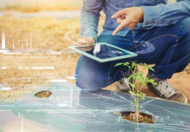 Intelligenza Artificiale: una rivoluzione per l'agricoltura