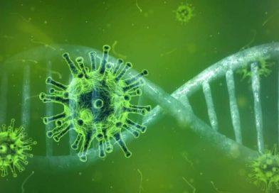 Coronavirus: hacker sfruttano paura epidemia