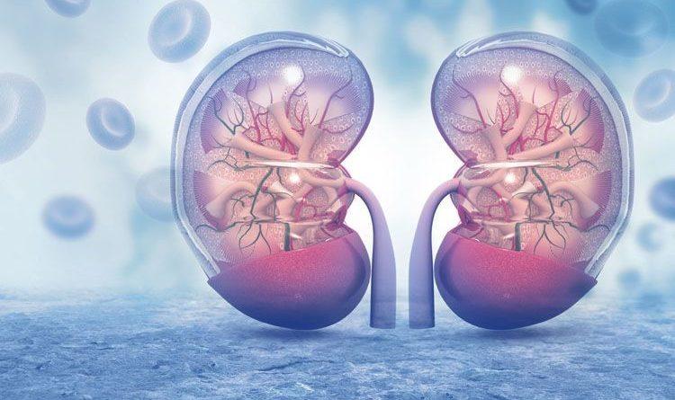 Il 50% dei pazienti COVID ha svilupato un danno renale